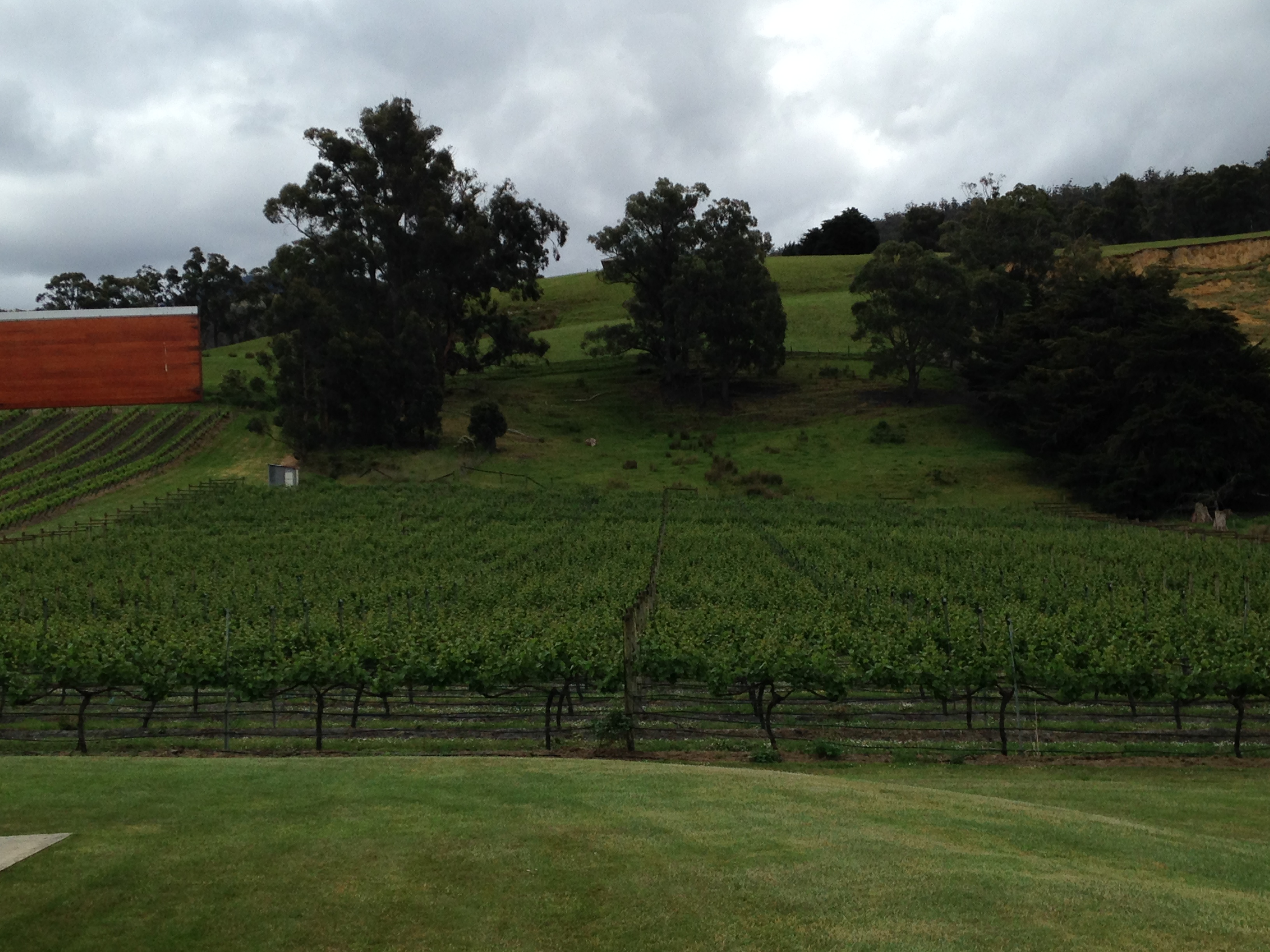 Home Hill Winery Huon Valley 4