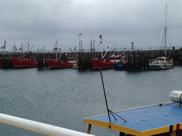 Stanley Fishing Boats and Harbour 011115