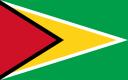 Guyana_flag